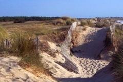 Dune de Pen Bron